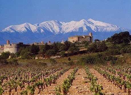 Roussillon vakantie logeren bij belgen in frankrijk